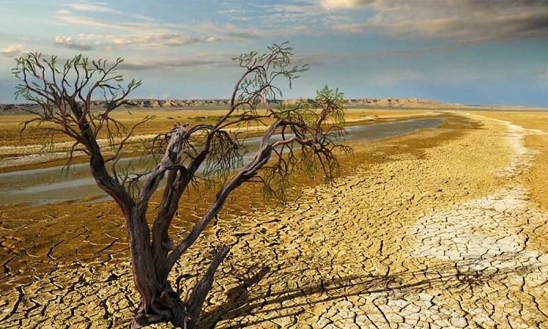 पाकिस्तानमा पानीको संकट भएपछि किसानहरुद्वारा विरोध